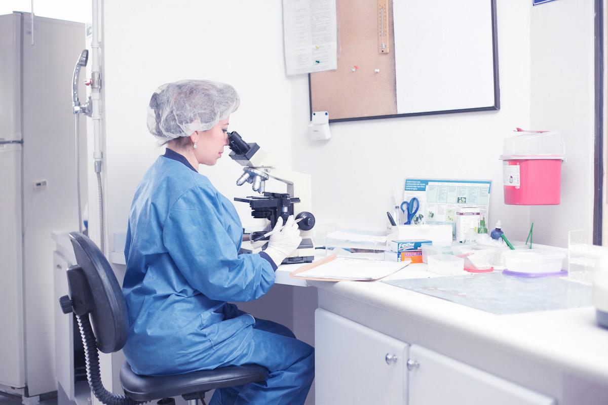 laboratorio_veterinario_bogota2